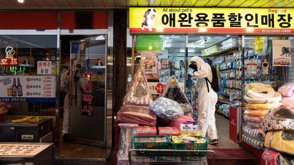 pikkelysömör kezelése Koreában