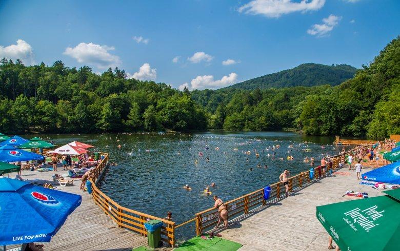 pikkelysömör kezelése tó medve vélemények)